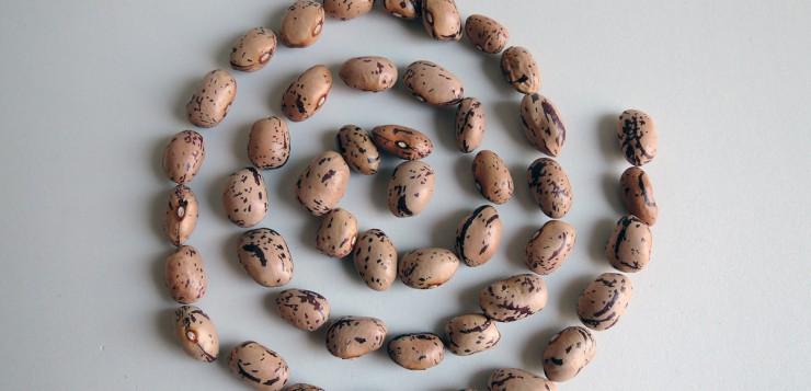 Lamon beans