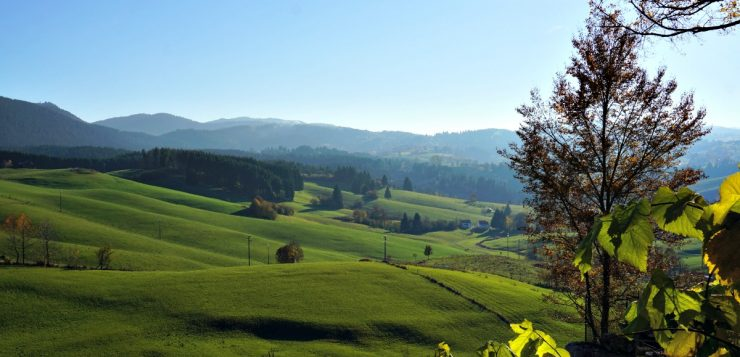What to do in Asiago apart from eating cheese? :)