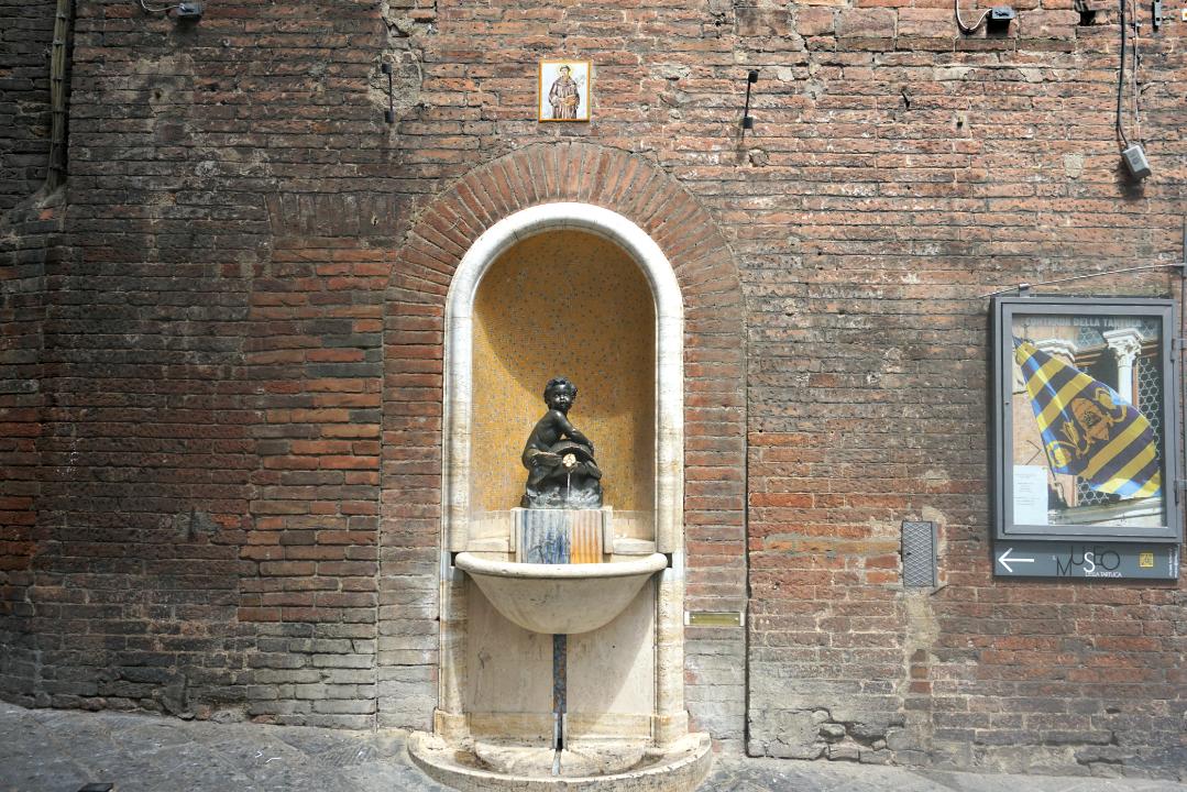 Tartuca Fountain