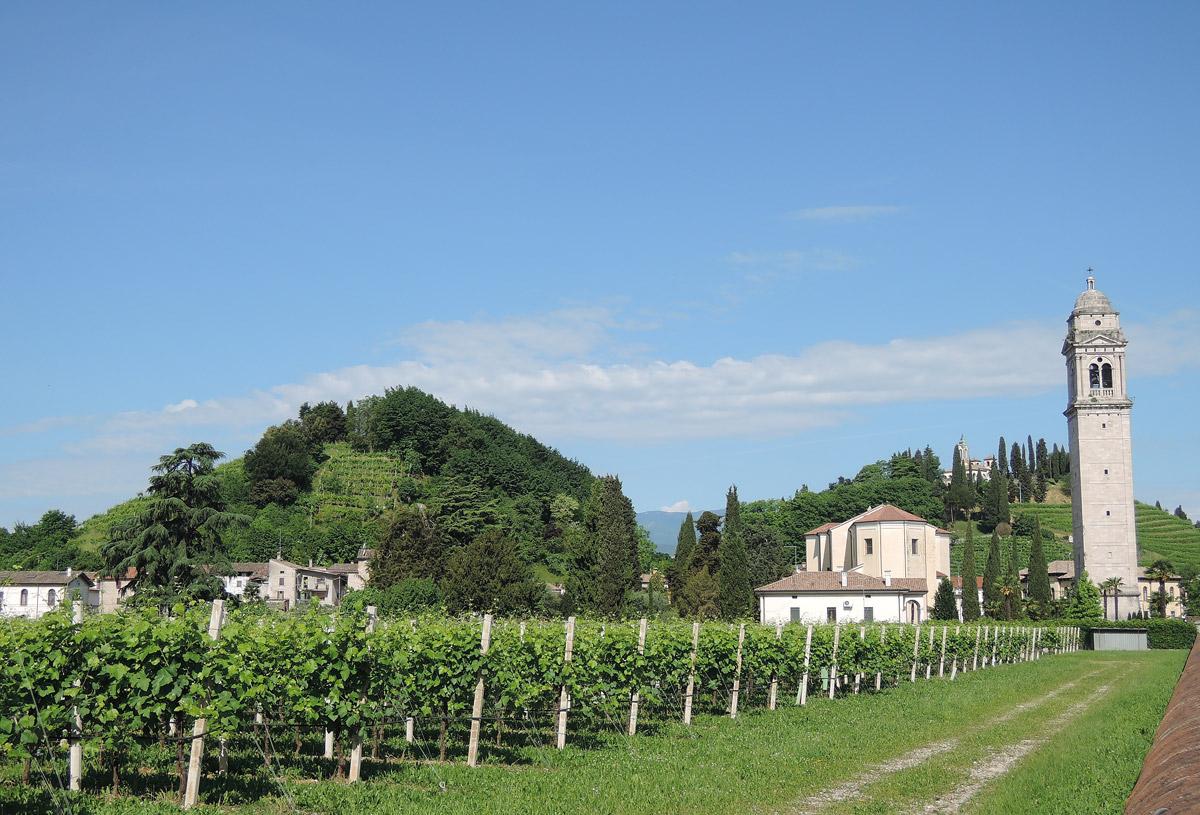 Vidor Hills