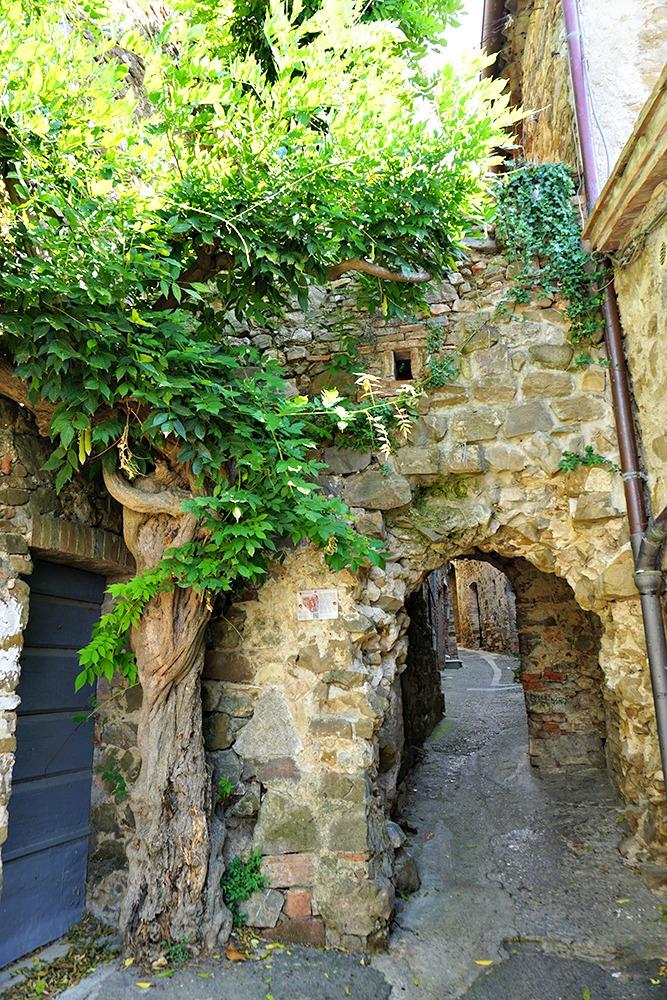Door of Montemerano