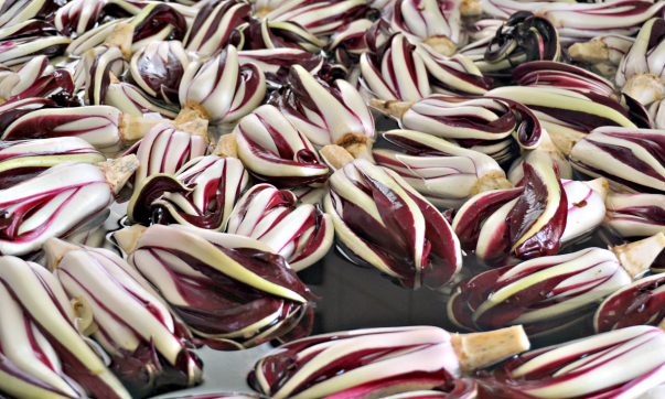 Radicchio washing phase